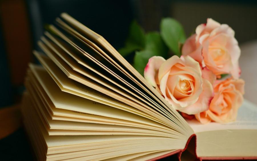 book-1769228_1920